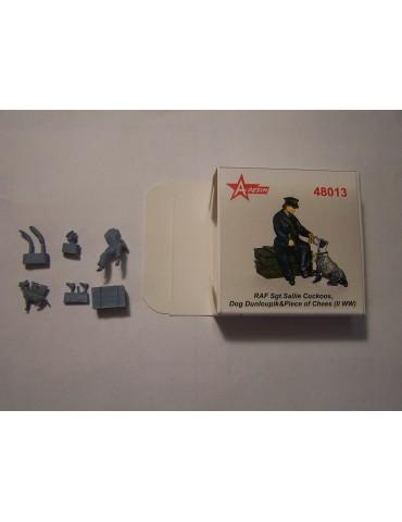 A-Resin 48013 RAF Sgt....