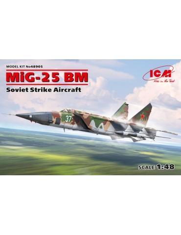 ICM 48905 Советский...