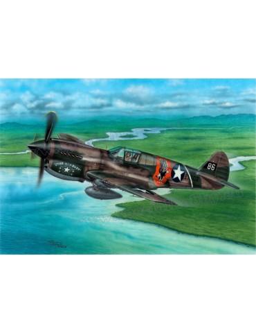 Special Hobby SH72338 P-40E...