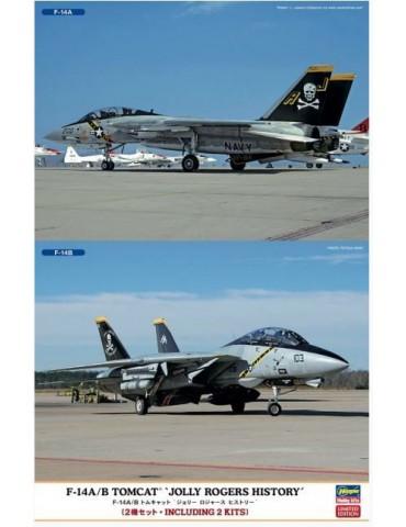 Hasegawa 02106 F-14A/B...